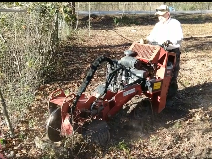 Stump Grinding at the Cemetery